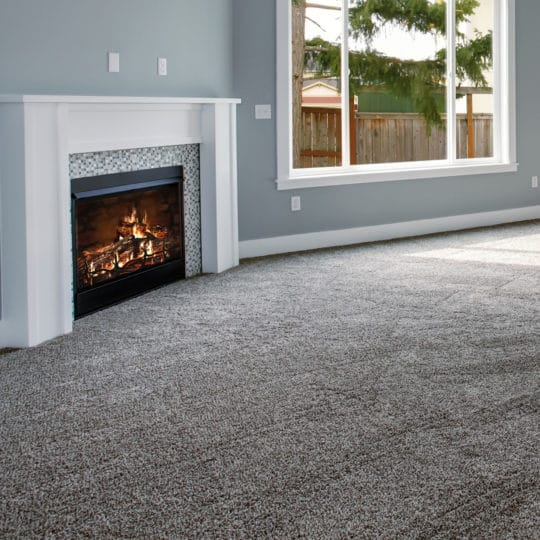 How Often Should You Get Your Carpet Professionally Cleaned?