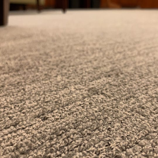 smelly carpet
